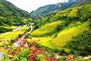Bảng báo giá tour du lịch sapa giá gốc khởi hành hàng ngày